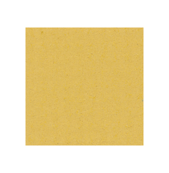 1,4 mm Passepartout mit individuellem Ausschnitt 13x18 cm | Mustard Yellow